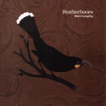 Featherbones by Matt Langley cover art