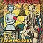 Flaming Soul by Flesh D-Vice cover art